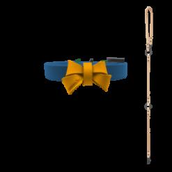 mmsu-haの首輪とリード